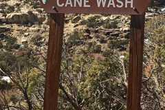 cane-wash