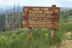 coal-Fork