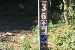 route-36